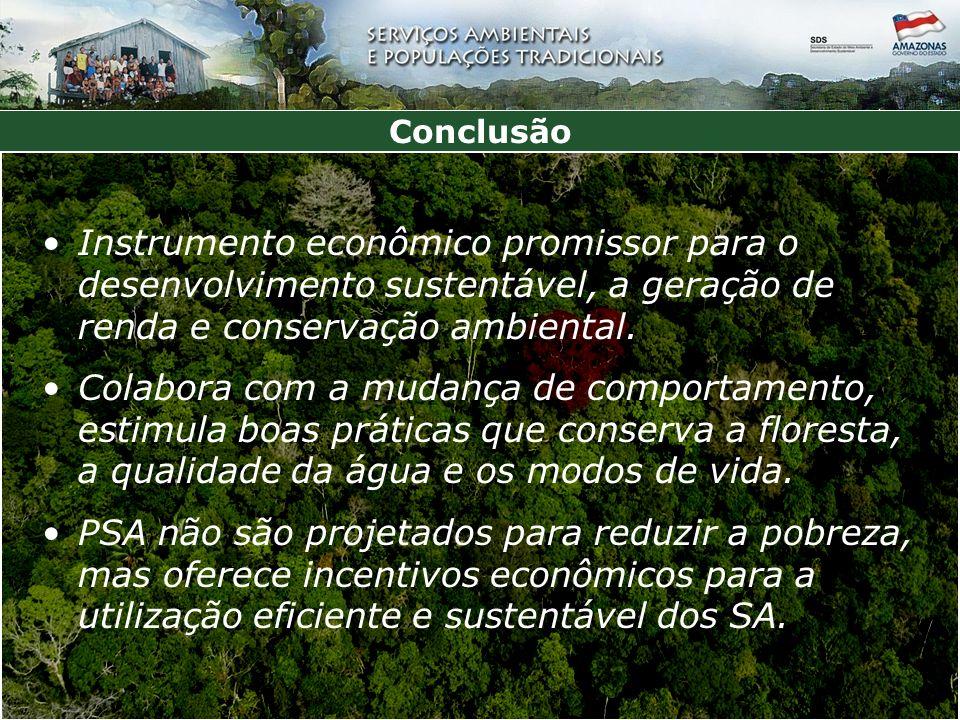 Conclusão Instrumento econômico promissor para o desenvolvimento sustentável, a geração de renda e conservação ambiental.
