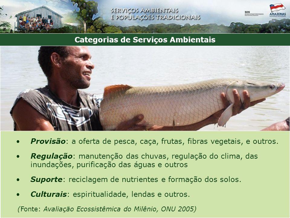 Categorias de Serviços Ambientais