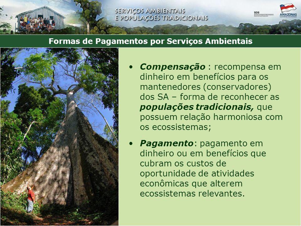 Formas de Pagamentos por Serviços Ambientais