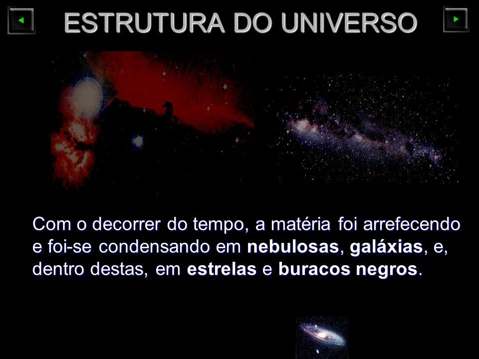 ESTRUTURA DO UNIVERSO