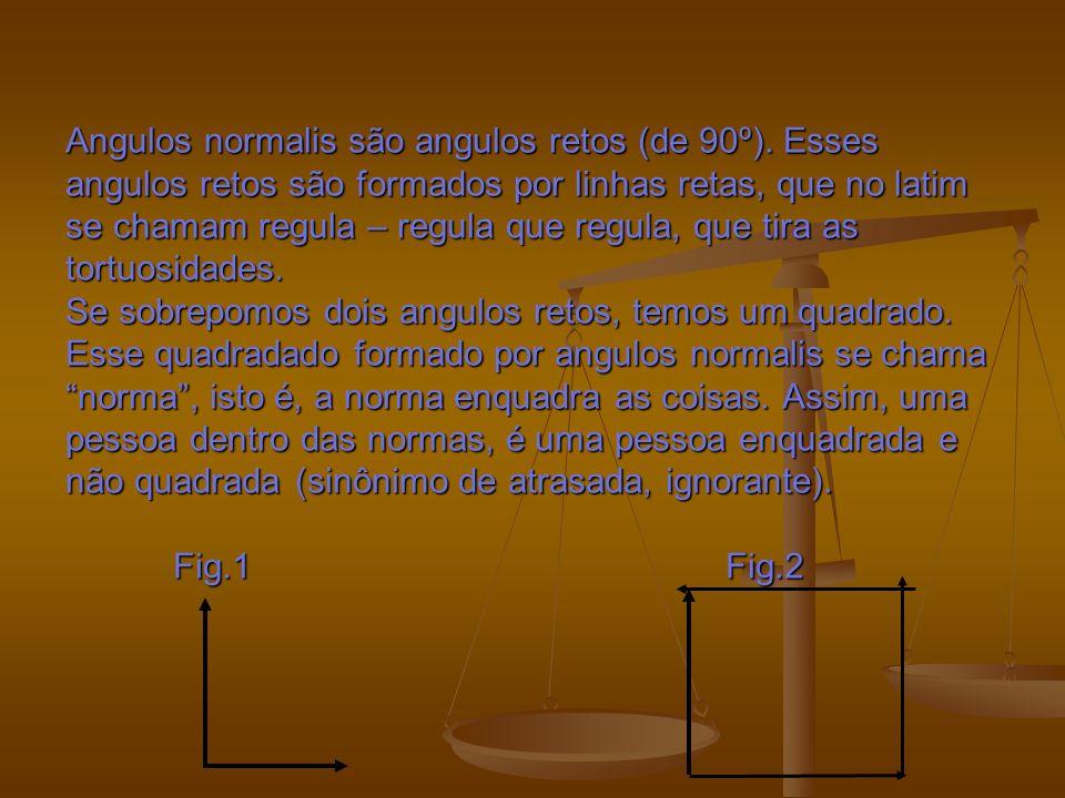 Angulos normalis são angulos retos (de 90º)