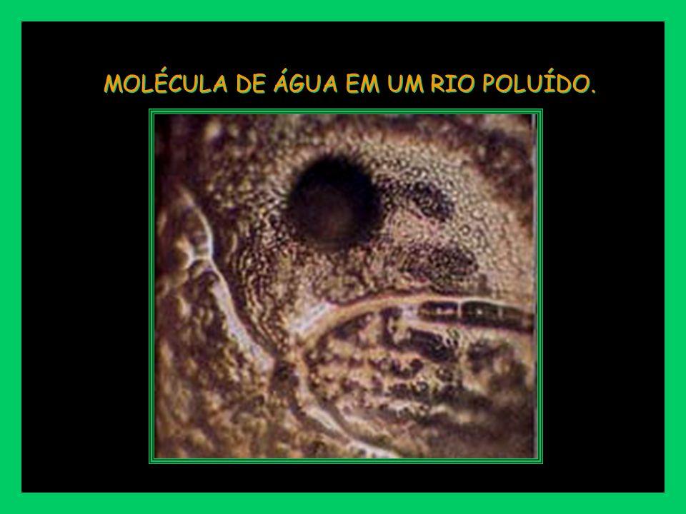 MOLÉCULA DE ÁGUA EM UM RIO POLUÍDO.