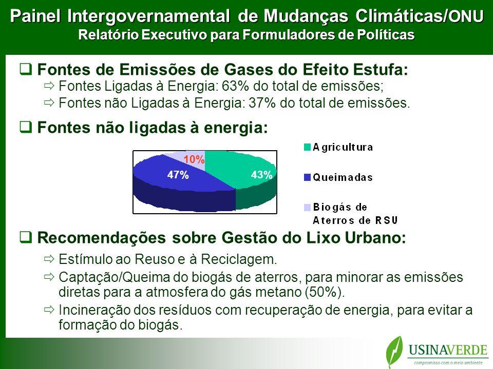 Painel Intergovernamental de Mudanças Climáticas/ONU Relatório Executivo para Formuladores de Políticas