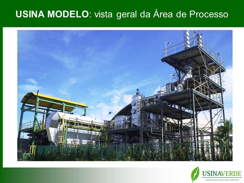 USINA MODELO: vista geral da Área de Processo