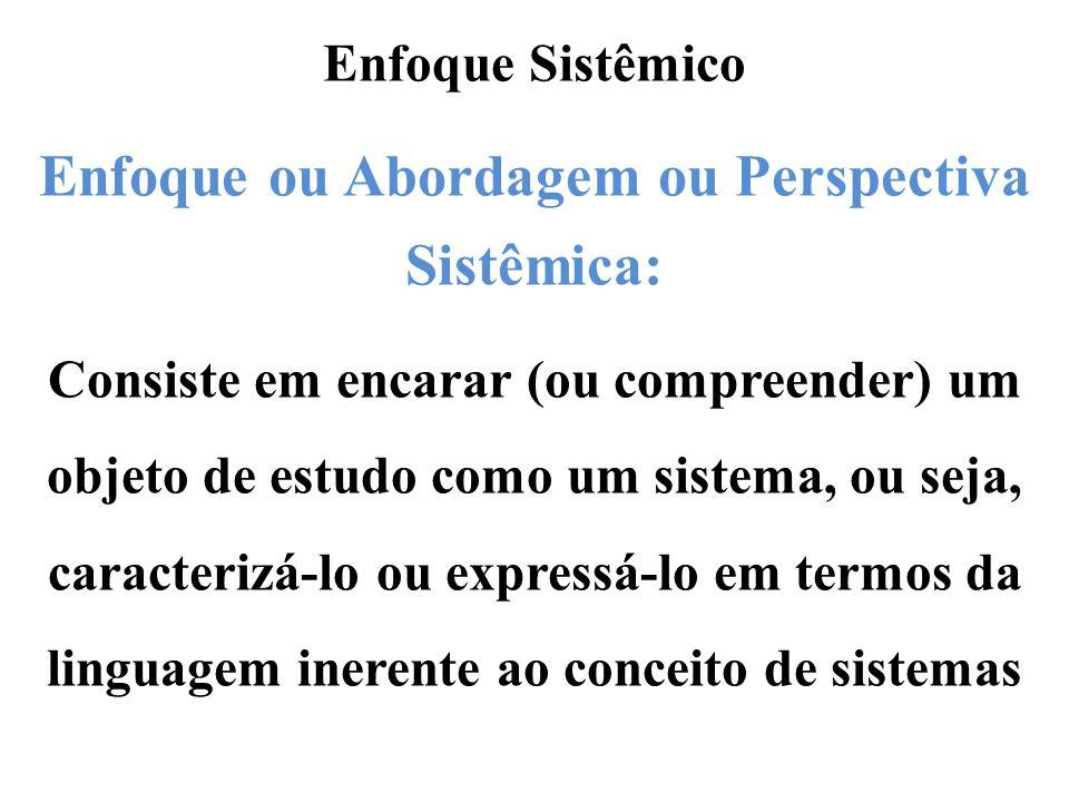 Enfoque ou Abordagem ou Perspectiva Sistêmica: