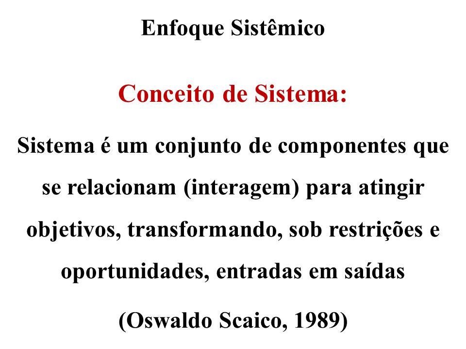 Conceito de Sistema: Enfoque Sistêmico