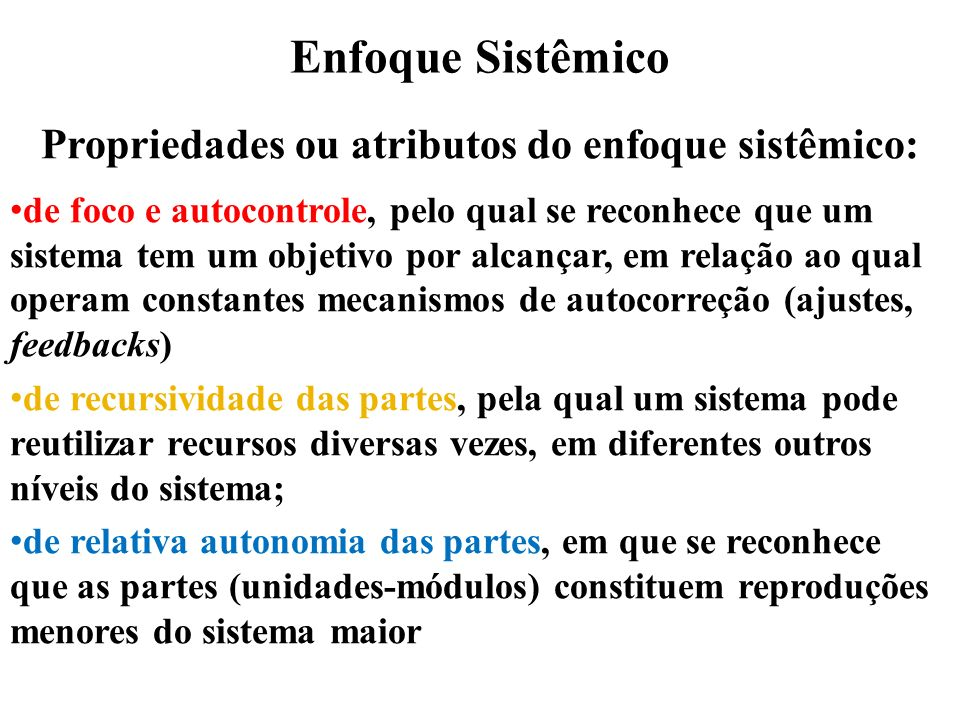 Propriedades ou atributos do enfoque sistêmico: