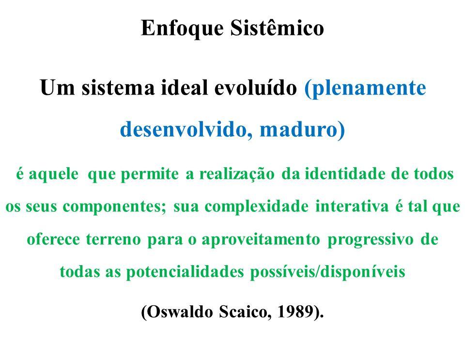 Um sistema ideal evoluído (plenamente desenvolvido, maduro)