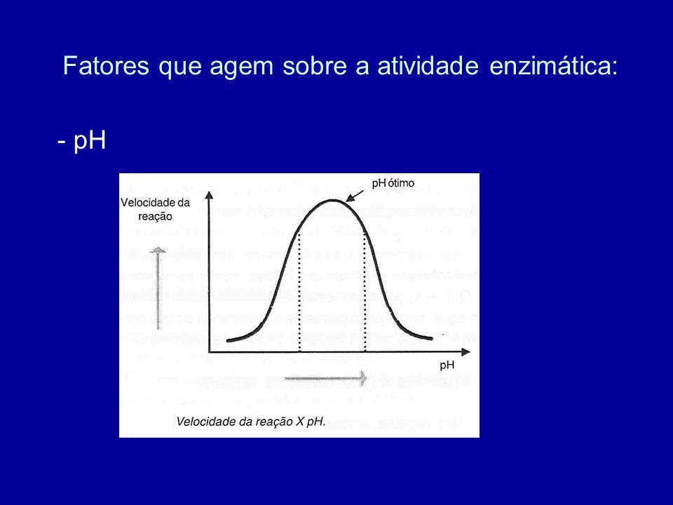 Fatores que agem sobre a atividade enzimática: