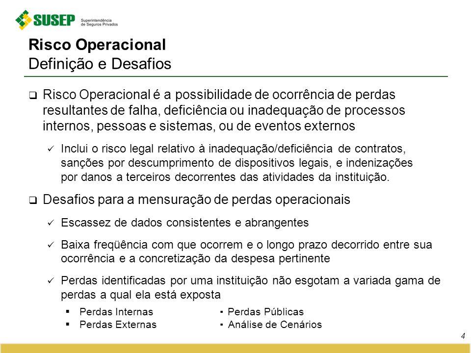 Risco Operacional Definição e Desafios