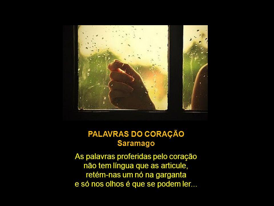 PALAVRAS DO CORAÇÃO Saramago