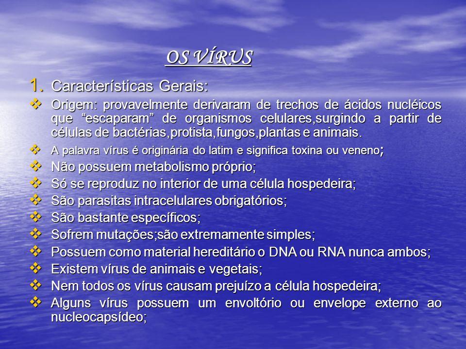 OS VÍRUS Características Gerais: