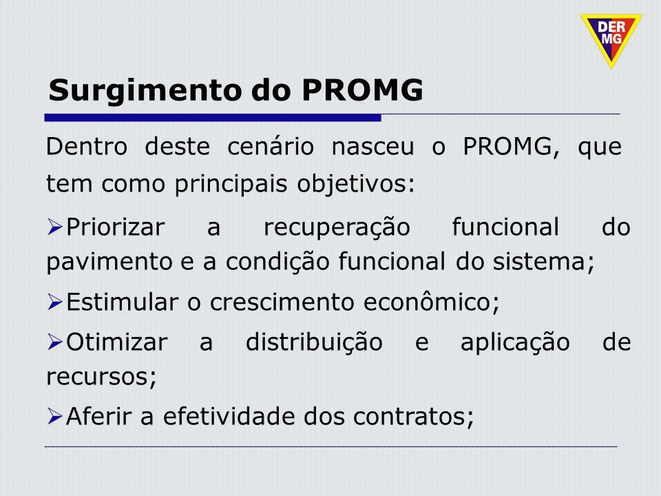 Surgimento do PROMG Dentro deste cenário nasceu o PROMG, que tem como principais objetivos: