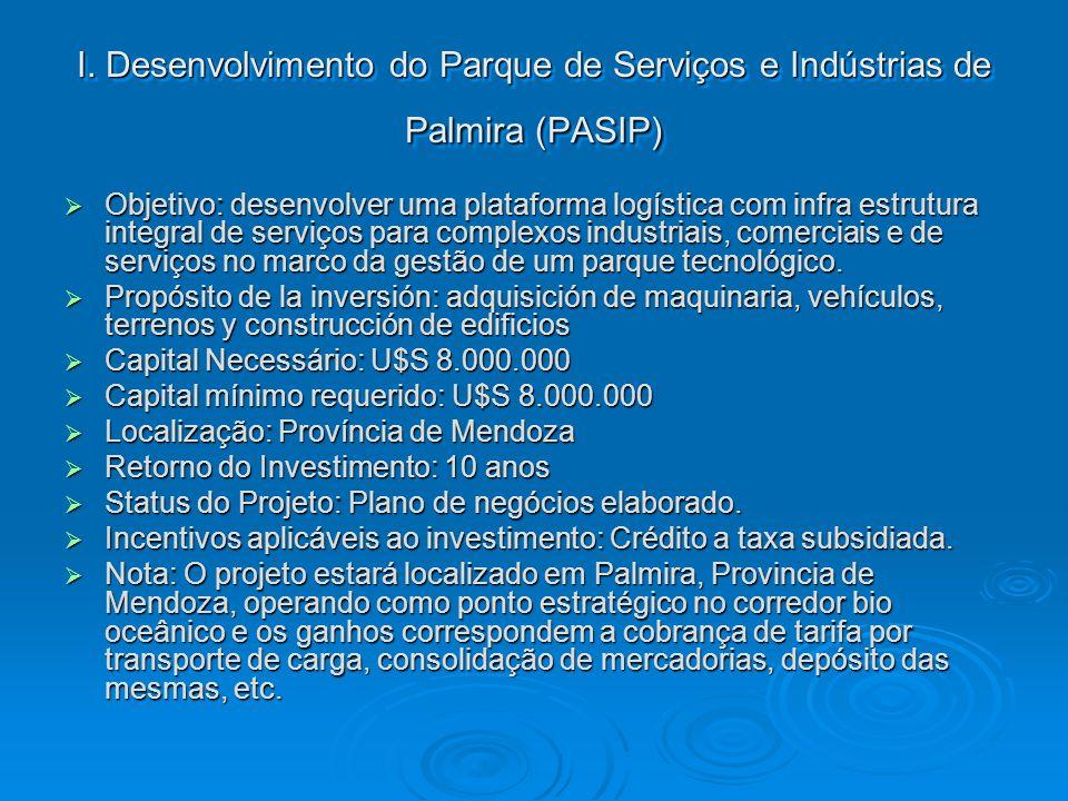 I. Desenvolvimento do Parque de Serviços e Indústrias de Palmira (PASIP)