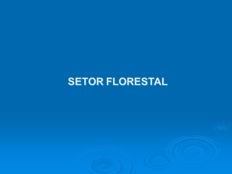 SETOR FLORESTAL
