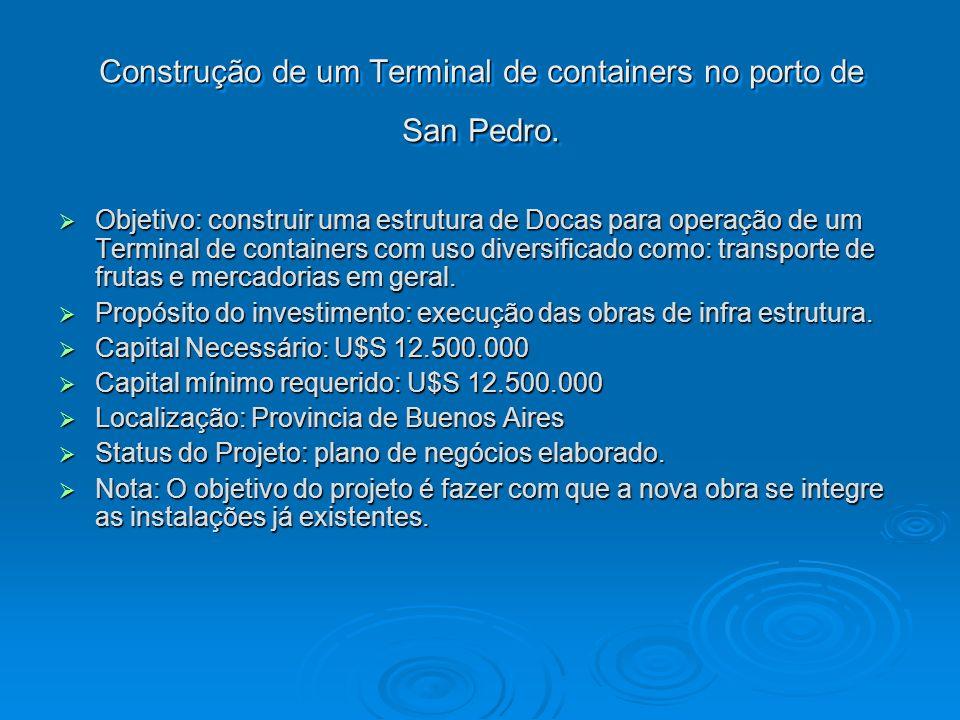 Construção de um Terminal de containers no porto de San Pedro.
