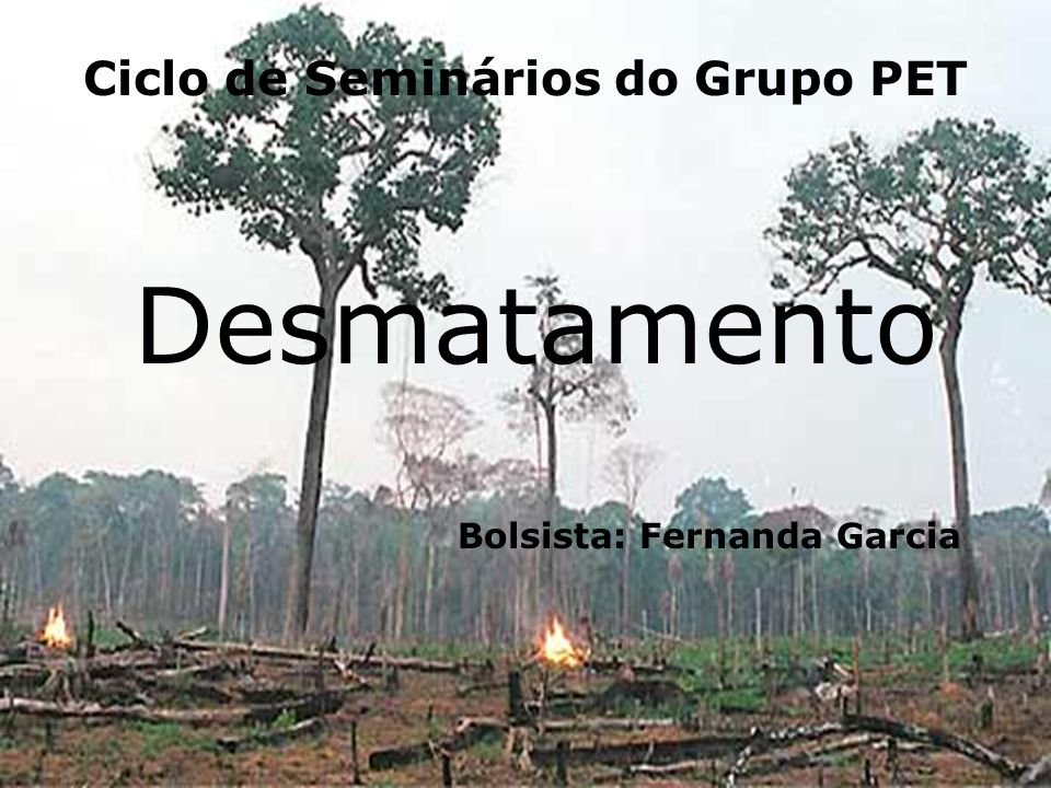 Ciclo de Seminários do Grupo PET