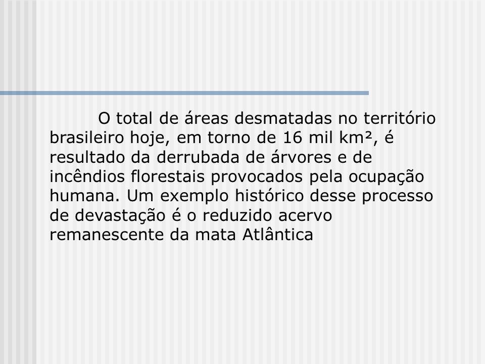 O total de áreas desmatadas no território brasileiro hoje, em torno de 16 mil km², é resultado da derrubada de árvores e de incêndios florestais provocados pela ocupação humana.