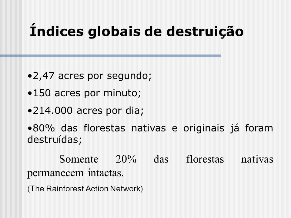 Índices globais de destruição