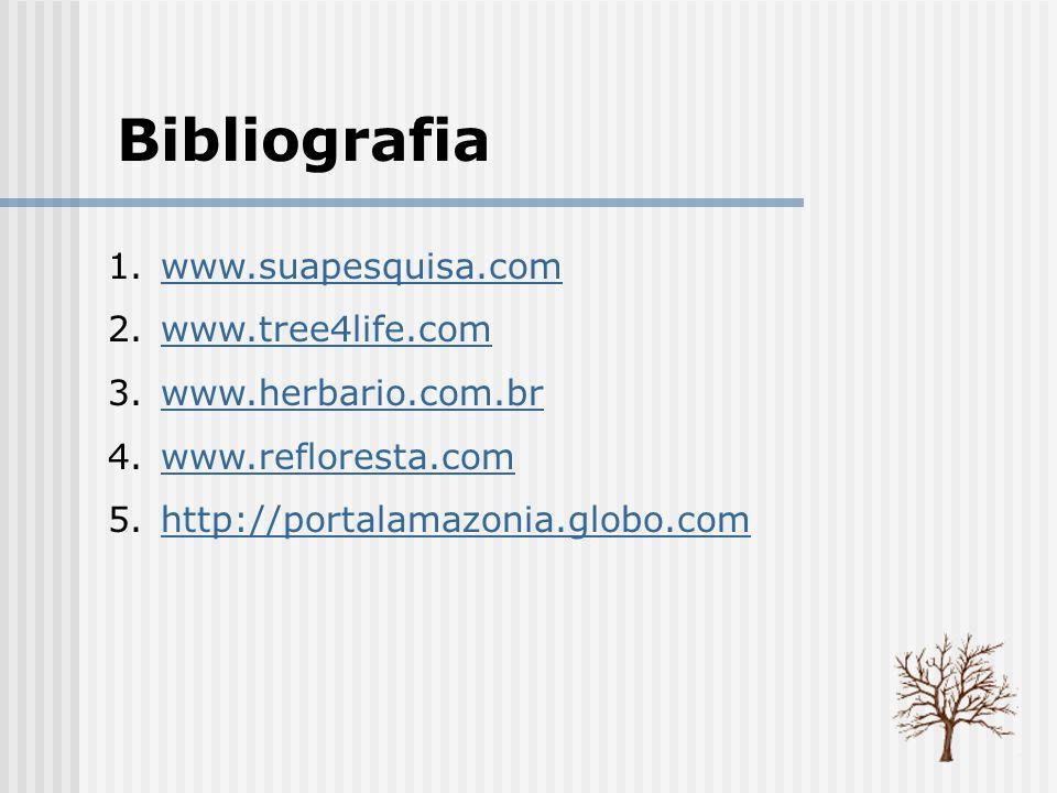 Bibliografia www.suapesquisa.com www.tree4life.com www.herbario.com.br