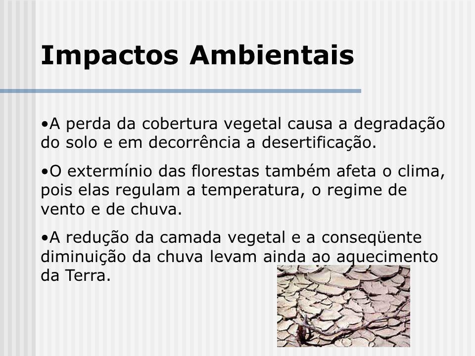 Impactos AmbientaisA perda da cobertura vegetal causa a degradação do solo e em decorrência a desertificação.