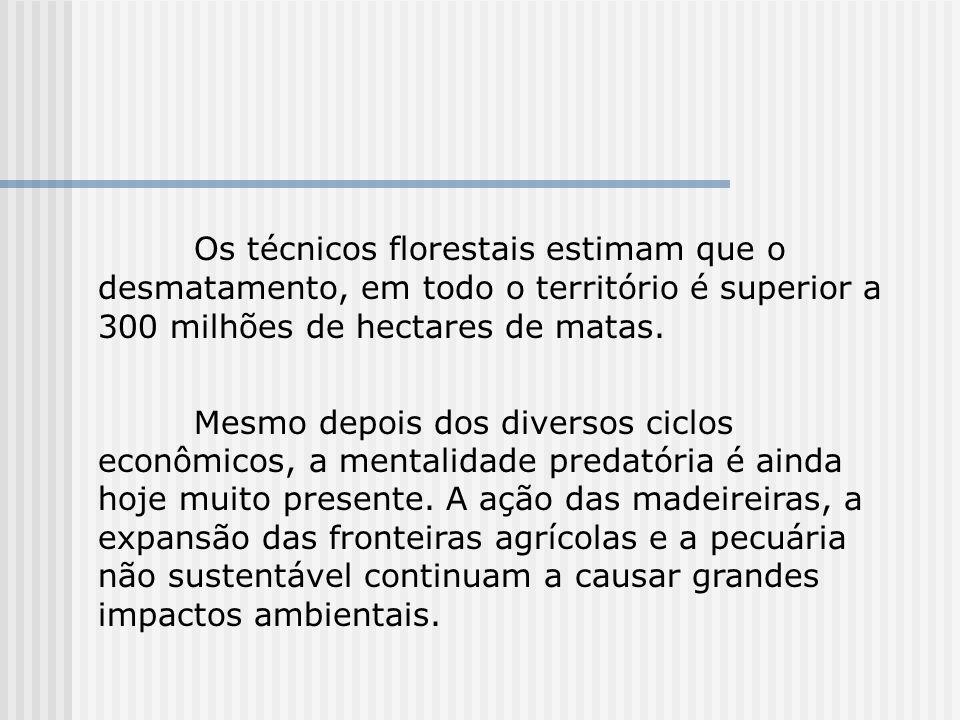 Os técnicos florestais estimam que o desmatamento, em todo o território é superior a 300 milhões de hectares de matas.