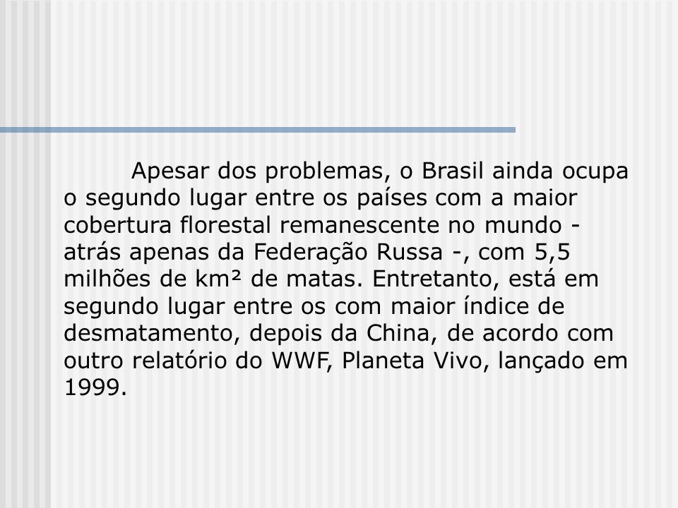 Apesar dos problemas, o Brasil ainda ocupa o segundo lugar entre os países com a maior cobertura florestal remanescente no mundo - atrás apenas da Federação Russa -, com 5,5 milhões de km² de matas.