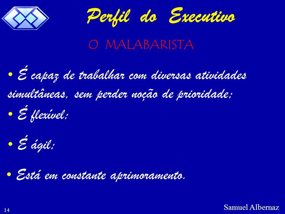 Perfil do Executivo O MALABARISTA. É capaz de trabalhar com diversas atividades simultâneas, sem perder noção de prioridade;