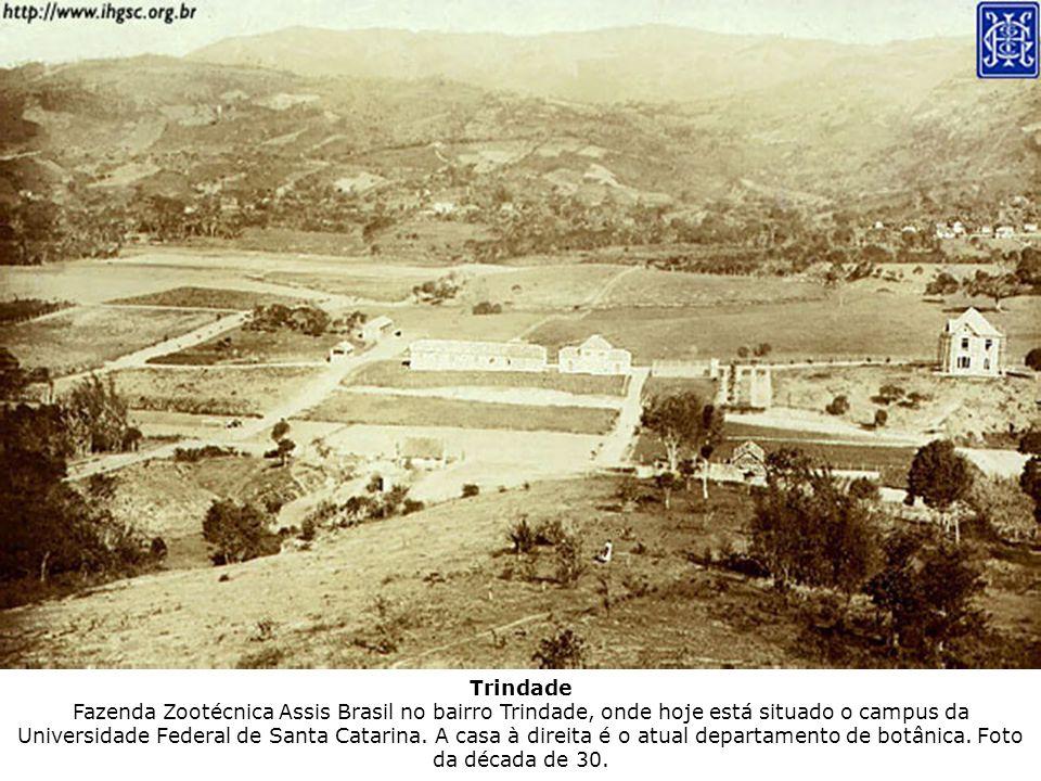 Trindade Fazenda Zootécnica Assis Brasil no bairro Trindade, onde hoje está situado o campus da Universidade Federal de Santa Catarina.