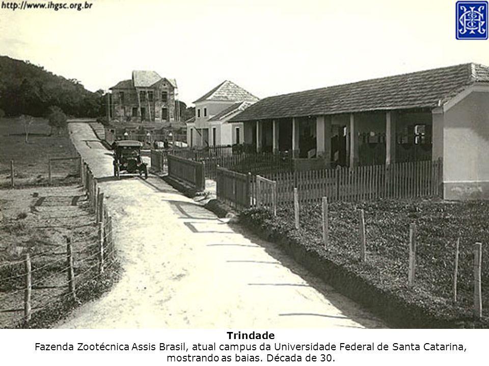 Trindade Fazenda Zootécnica Assis Brasil, atual campus da Universidade Federal de Santa Catarina, mostrando as baias.