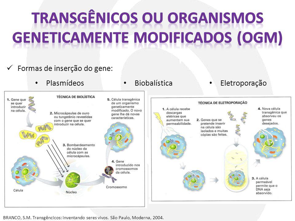transgênicos ou organismos geneticamente modificados (OGM)