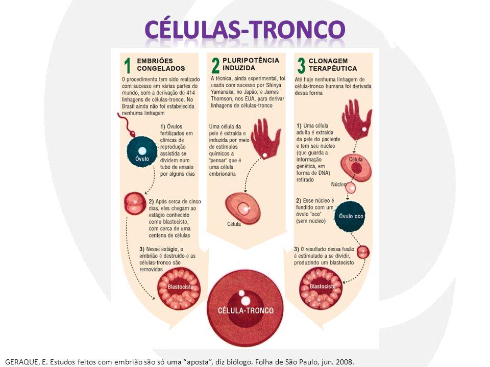 Células-tronco GERAQUE, E. Estudos feitos com embrião são só uma aposta , diz biólogo.