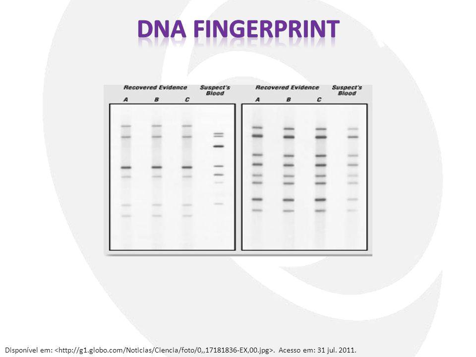 DNA fingerprint Disponível em: <http://g1.globo.com/Noticias/Ciencia/foto/0,,17181836-EX,00.jpg>.