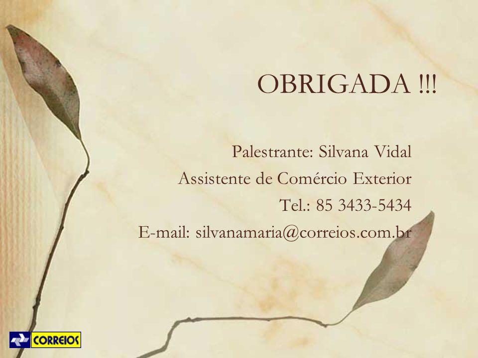OBRIGADA !!! Palestrante: Silvana Vidal