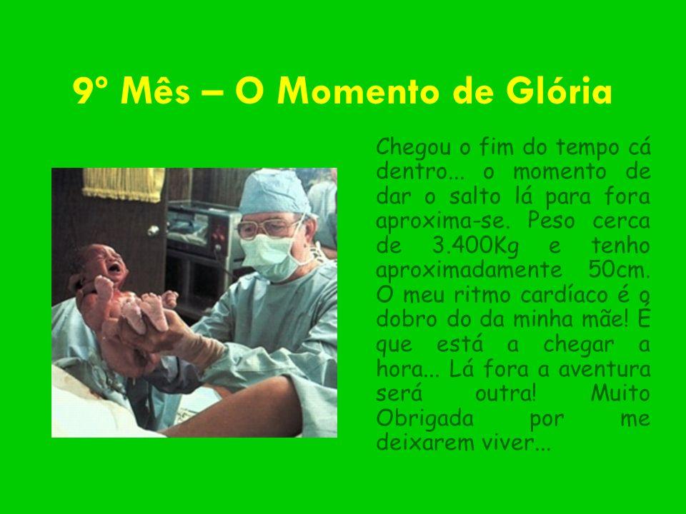9º Mês – O Momento de Glória