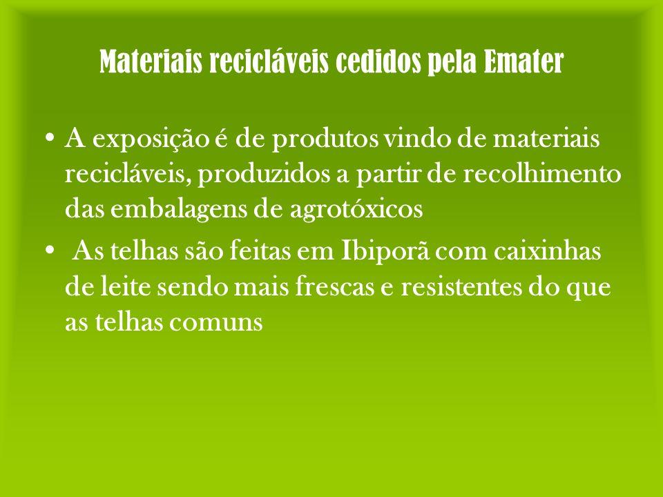 Materiais recicláveis cedidos pela Emater