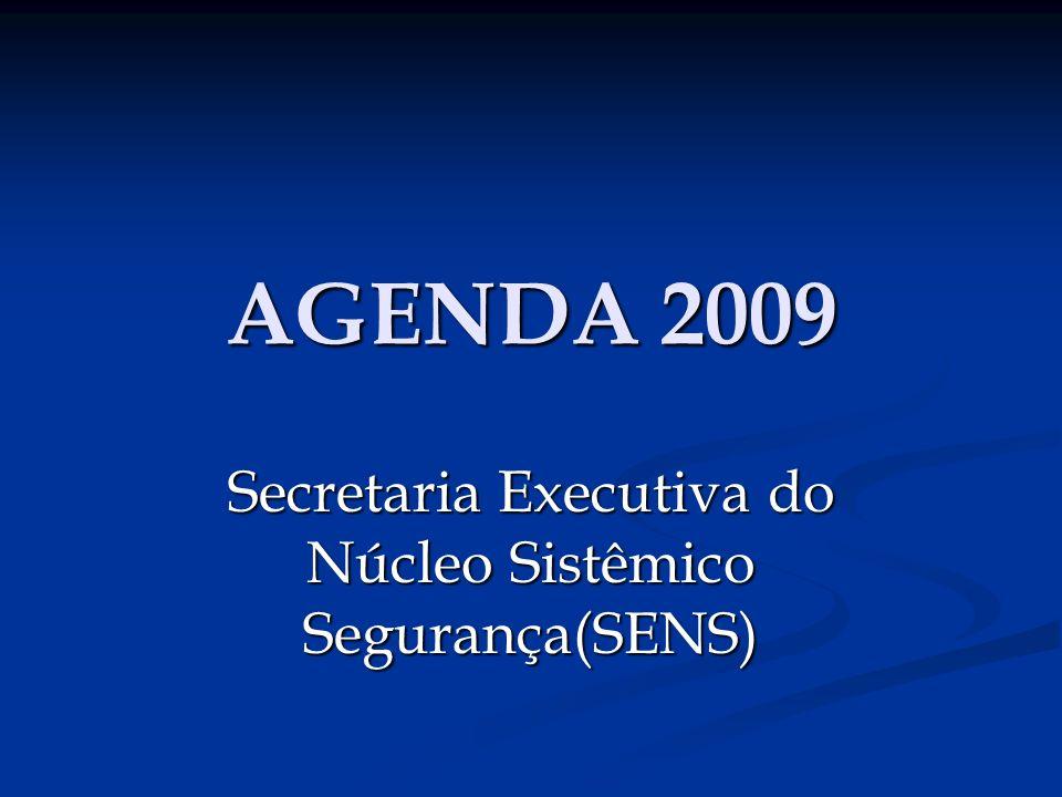 Secretaria Executiva do Núcleo Sistêmico Segurança(SENS)