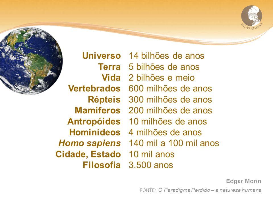 Universo Terra Vida Vertebrados Répteis Mamíferos Antropóides Hominídeos Homo sapiens Cidade, Estado Filosofia