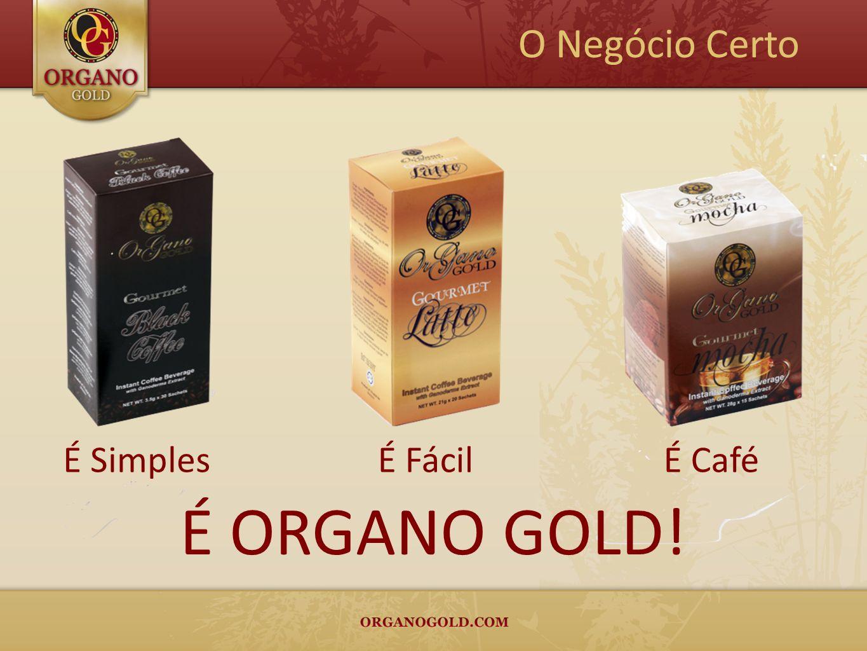 O Negócio Certo É Simples É Fácil É Café É ORGANO GOLD!