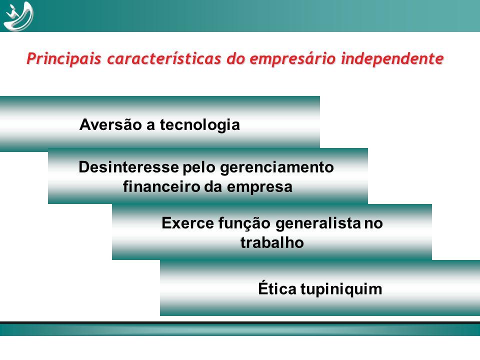 Principais características do empresário independente