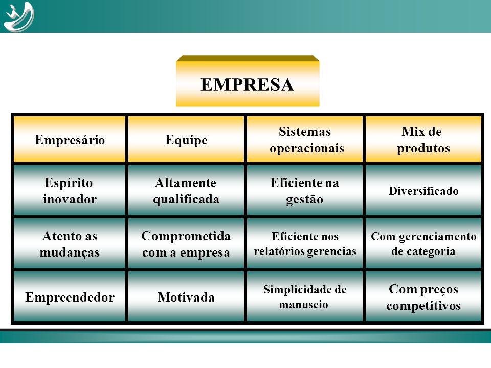 EMPRESA Empresário Equipe Sistemas operacionais Mix de produtos