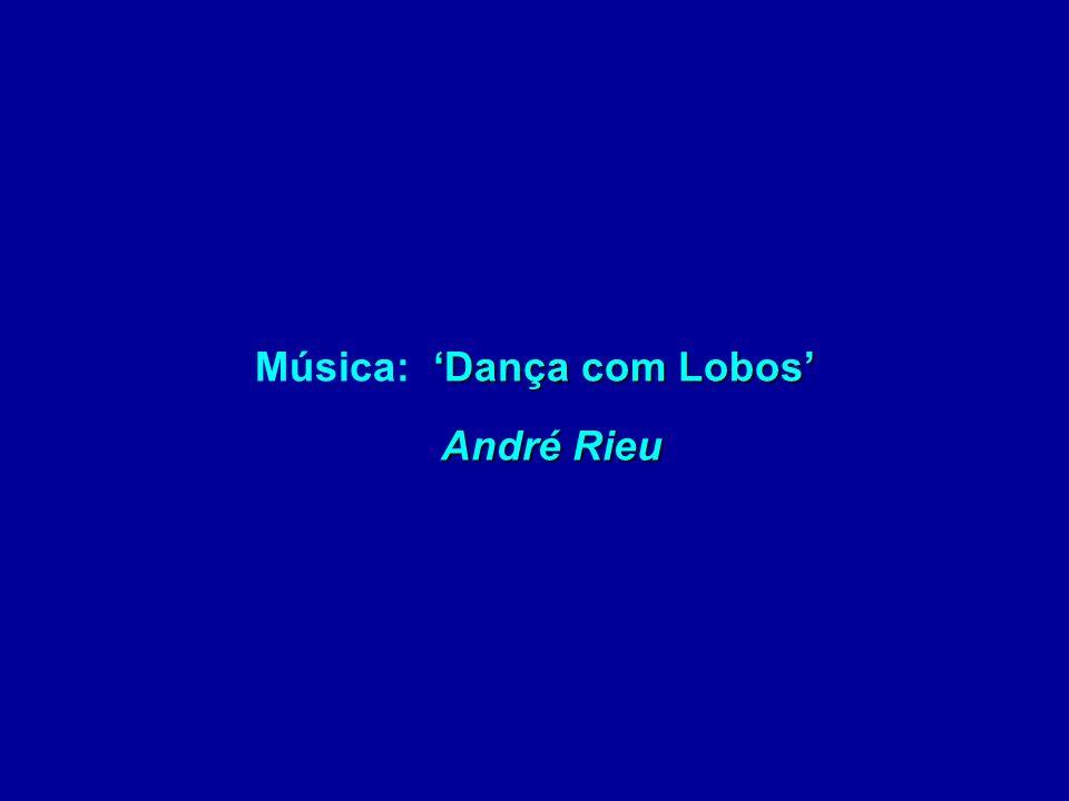 Música: 'Dança com Lobos' André Rieu