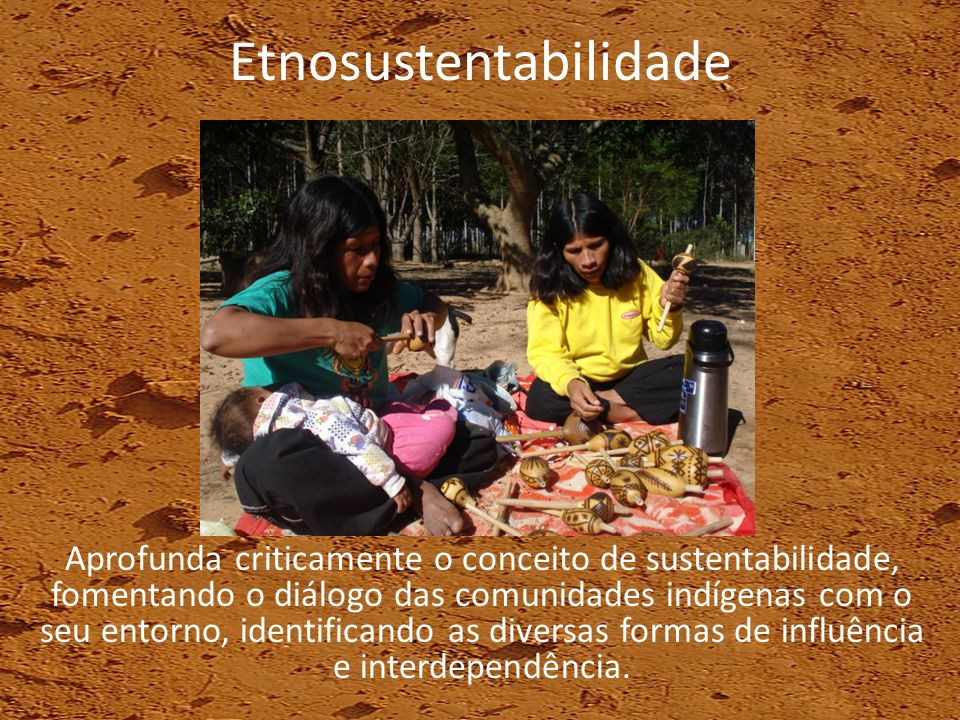 Etnosustentabilidade