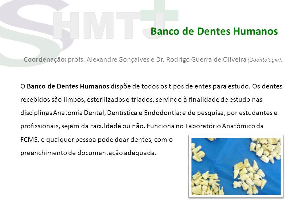 Banco de Dentes Humanos