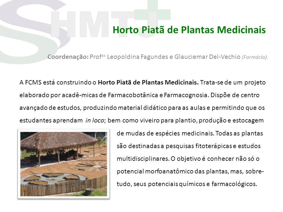 Horto Piatã de Plantas Medicinais