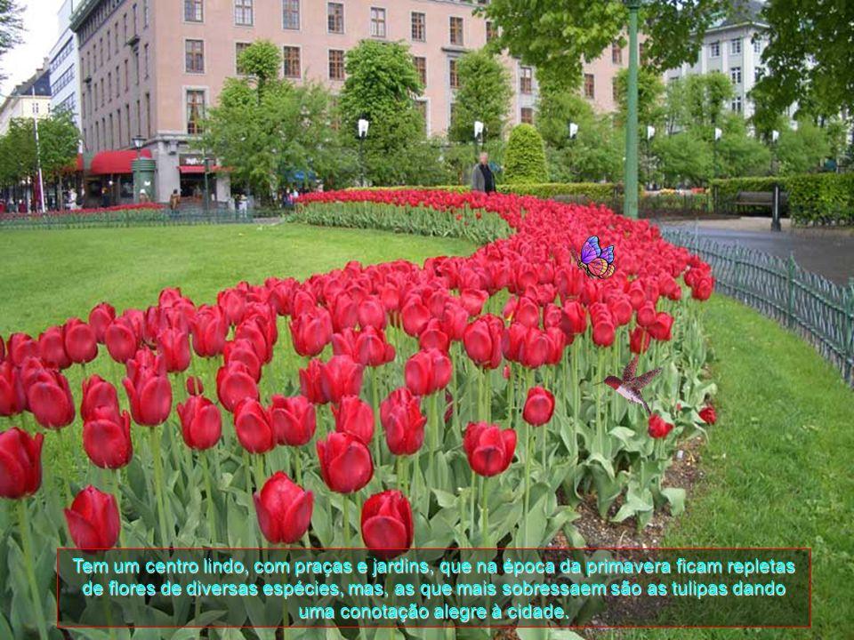 Tem um centro lindo, com praças e jardins, que na época da primavera ficam repletas de flores de diversas espécies, mas, as que mais sobressaem são as tulipas dando uma conotação alegre à cidade.