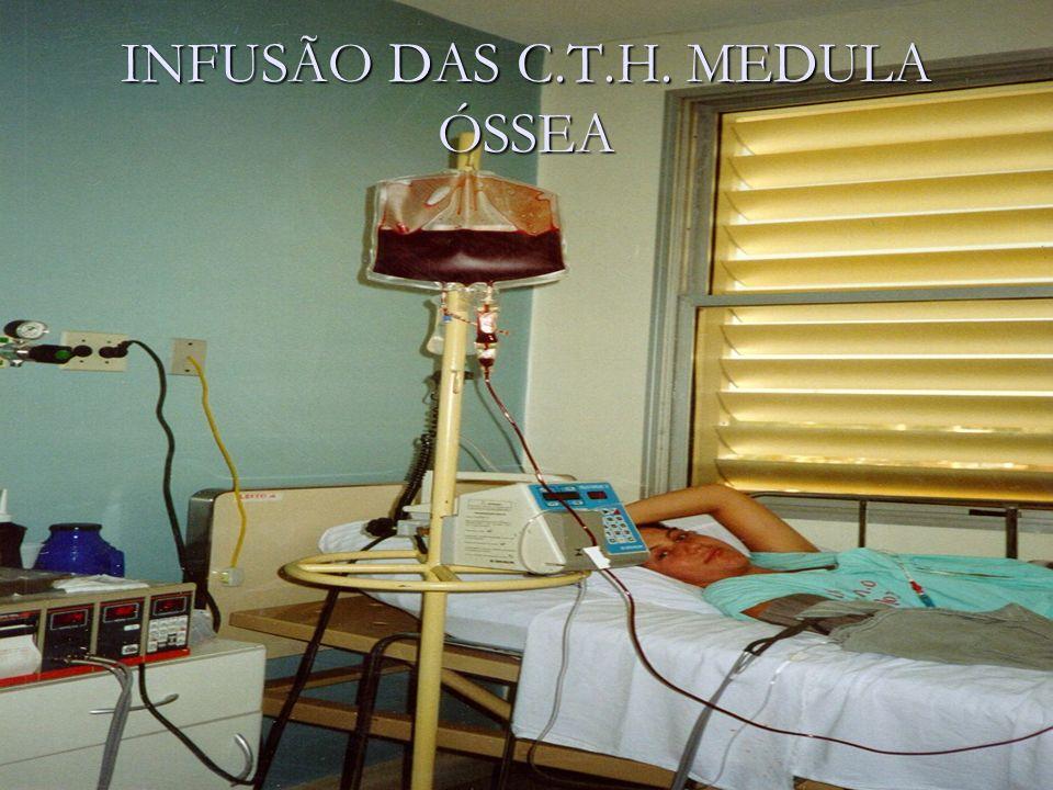 INFUSÃO DAS C.T.H. MEDULA ÓSSEA