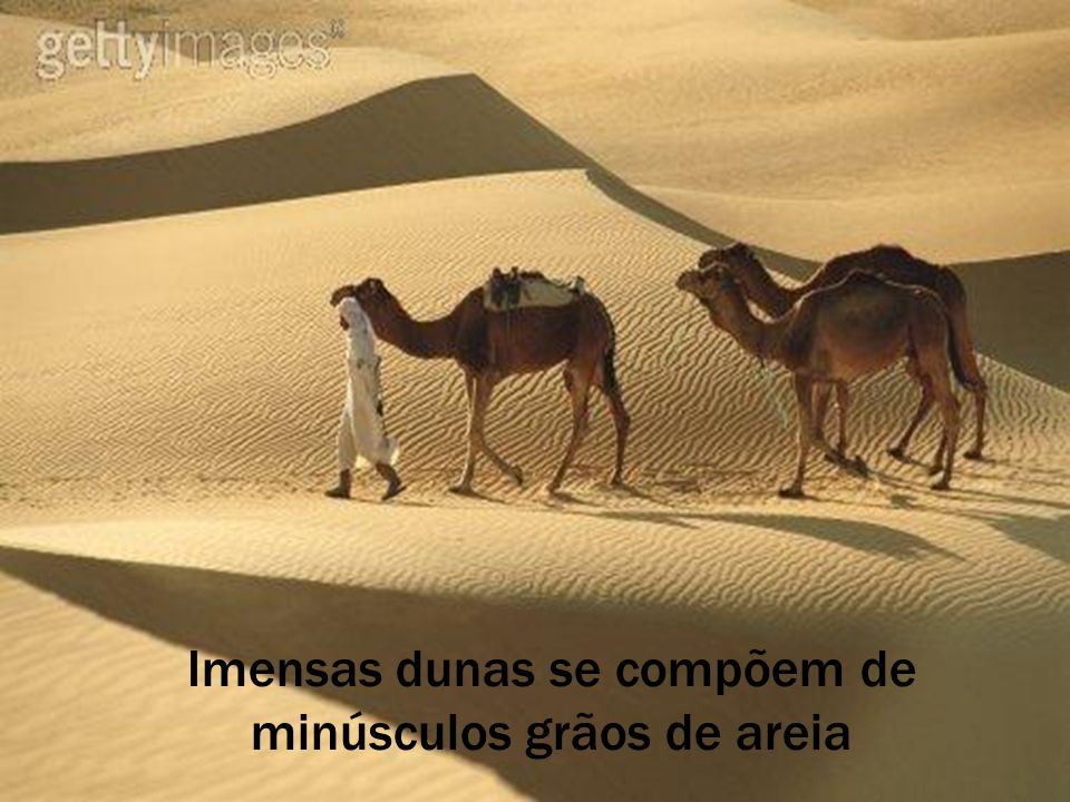 Imensas dunas se compõem de minúsculos grãos de areia