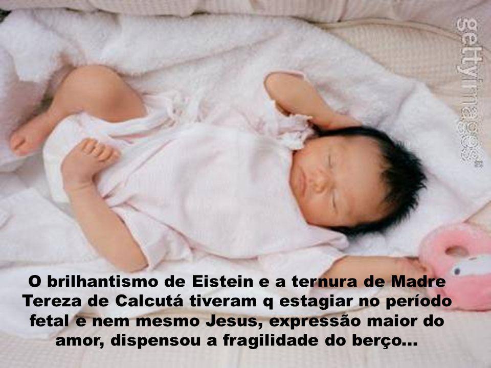 O brilhantismo de Eistein e a ternura de Madre Tereza de Calcutá tiveram q estagiar no período fetal e nem mesmo Jesus, expressão maior do amor, dispensou a fragilidade do berço...
