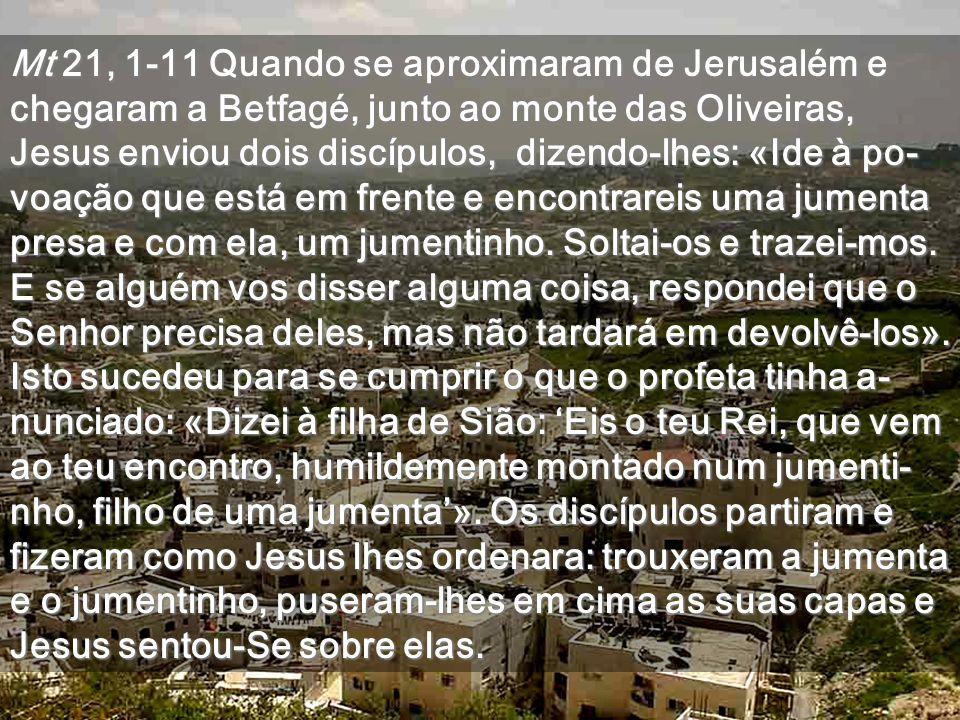 Mt 21, 1-11 Quando se aproximaram de Jerusalém e chegaram a Betfagé, junto ao monte das Oliveiras, Jesus enviou dois discípulos, dizendo-lhes: «Ide à po-voação que está em frente e encontrareis uma jumenta presa e com ela, um jumentinho.